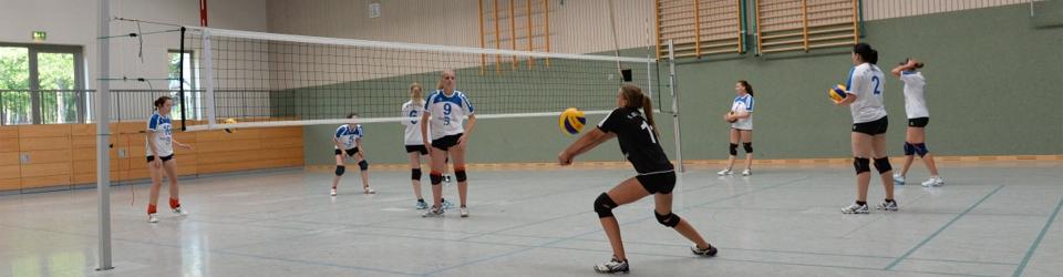 Aufschlag-Annahme im Volleyball
